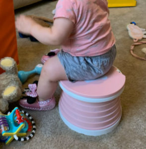 Portable and Foldable Potty - Emergency Toilet photo review